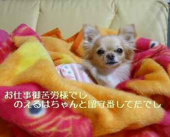 blog2010041101.jpg