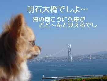 blog2010042502.jpg