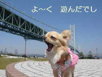 blog2010042516.jpg