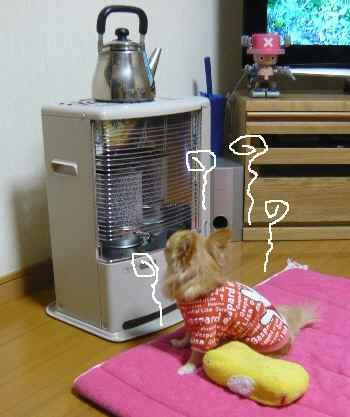 blog2010113002.jpg