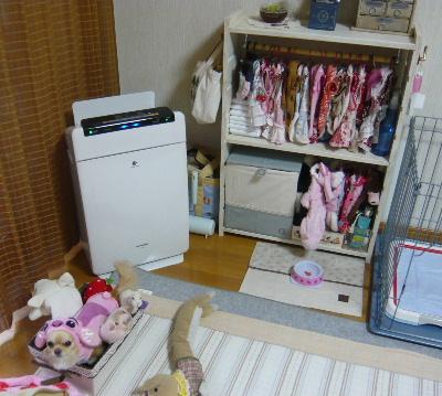 blog2010120604.jpg