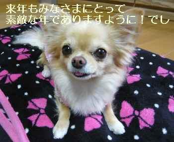 blog2010123104.jpg