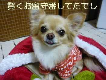 blog2011011701.jpg