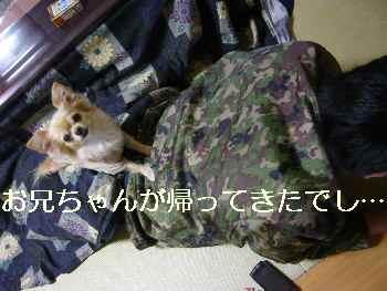 blog2011012106.jpg