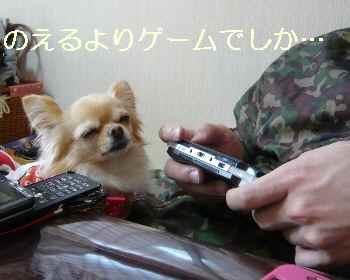 blog2011012301.jpg