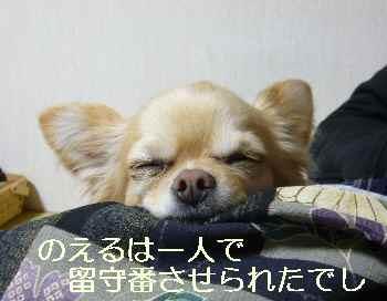 blog2011012501.jpg