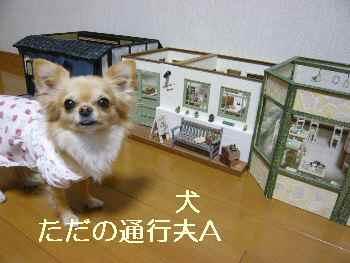 blog2011020202.jpg