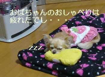 blog2011020905.jpg