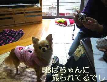 blog2011021004.jpg
