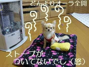 blog2011022302.jpg