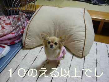 blog2011022504.jpg