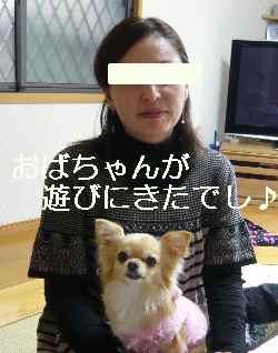 blog2011030303.jpg