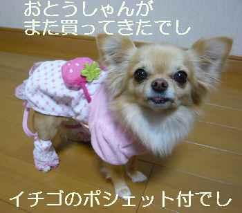 blog2011030406.jpg