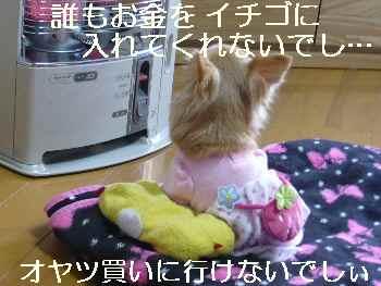 blog2011030502.jpg