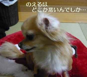blog2011030705.jpg