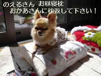 blog2011030802.jpg