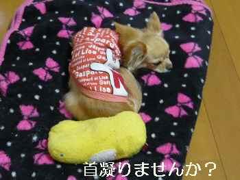 blog2011031001.jpg
