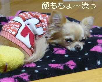 blog2011031002.jpg