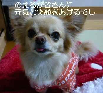 blog2011031403.jpg