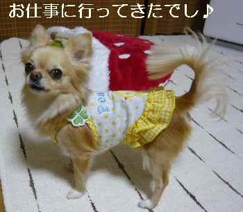 blog2011031601.jpg
