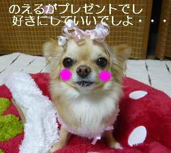 blog2011031703.jpg