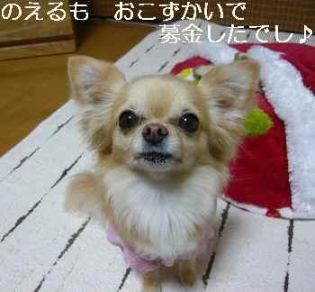 blog2011032102.jpg