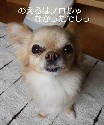 blog2011032402.jpg