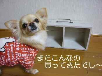 blog2011032604.jpg