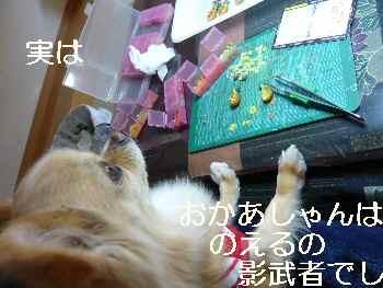 blog2011032701.jpg