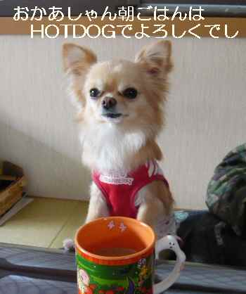 blog2011032802.jpg