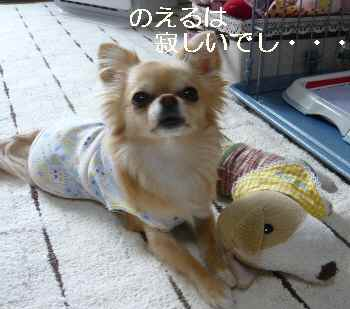 blog2011033006.jpg