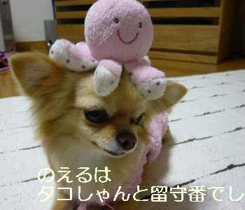 blog2011040402.jpg