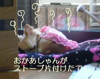blog2011040501.jpg