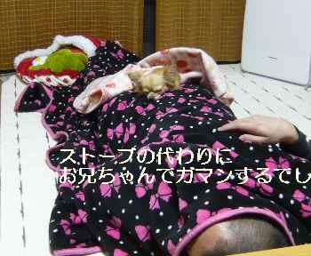 blog2011040606.jpg
