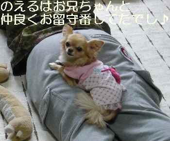 blog2011041002.jpg