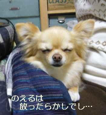 blog2011041203.jpg