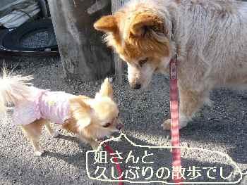 blog2011041301.jpg