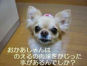 blog2011041602.jpg
