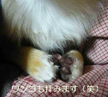 blog2011042104.jpg