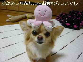 blog2011042302.jpg