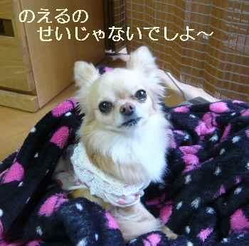 blog2011042503.jpg
