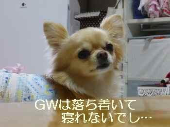 blog2011050302.jpg