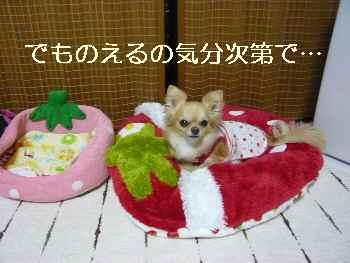 blog2011050802.jpg
