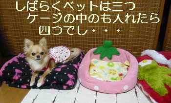 blog2011050803.jpg