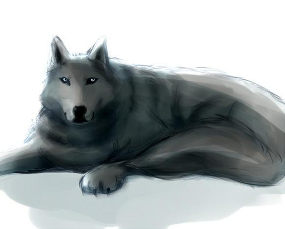 wolf_bitounosan