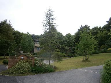 P6200475.jpg