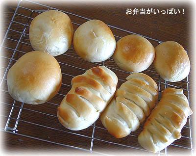 100313パン1