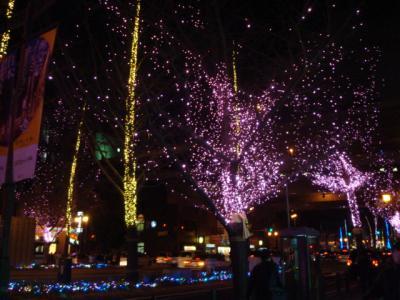 2010-Dec-midousuzi+1_convert_20110108112926.jpg