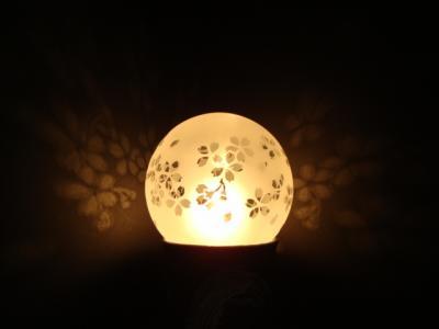 灯り 桜_20110207154501