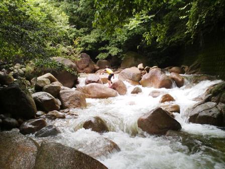 石水渓20100620-1
